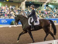 160409_2016_SydneyCDI_GPFS_4651.jpg (FranzVenhaus) Tags: horses test sydney australia nsw judge newsouthwales aus equestrian riders dressage siec