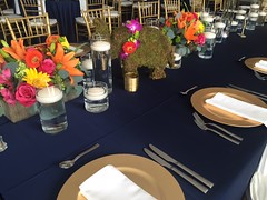 peterson-singh-wedding (4) (FestivitiesMN) Tags: wedding indian walker ethnic walkerartcenter centerpieces 2016 mosscovered floralcenterpiece harvesttable apriil navylinen weddingfloral rebeccapeterson chiavarichairs goldcharger petersonsingh mosselephant