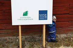 Adventure (alpros) Tags: nationalpark sweden schweden skandinavien naturereserve sverige haninge scandinavia nordeuropa tyres tyresta haningekommun northerneurope naturreservat sdermanland stockholmsln sdertrn tyreskommun astonpventyr