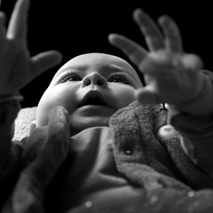 Je l'aurai un jour...Je l'aurai !! (Et si, et si ...) Tags: portrait monochrome lily mains bb regard jeu formatcarr