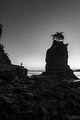 Siwash Rock (fernandobrandaodebraga) Tags: ocean longexposure sunset blackandwhite reflection water vancouver landscape rocks bc lookout siwashrock clearsky sonya6000