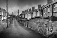 Avon Street and Angus Street, Easington Colliery (DM Allan) Tags: durham mining housing coal terraced billyelliot easingtoncolliery