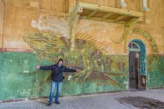 I found Godzilla!! (Thomas Frejek) Tags: de deutschland iguana brandenburg 2015 beelitz heilstättenbeelitz thomasfrejek