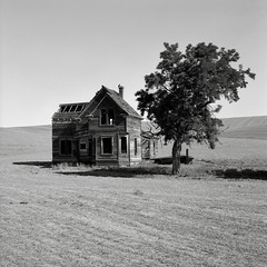 Abandoned Farmhouse, Oregon (austin granger) Tags: abandoned film field oregon farmhouse square time decay crop memory impermanence crow evidence fallow gf670 austingranger