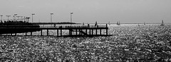 fishing pier (rocami19) Tags: leica dlux5