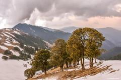 View from Shikari Devi temple (Sougata2013) Tags: india mountain snow landscape hill mandi cloudscape himachalpradesh shikaridevi nikond7200