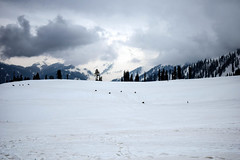 Clouds forming at Gulmarg. (Nirmalya Pandit) Tags: cloud india mountain snow tree day cloudy kashmir landskape gulmarg d3300