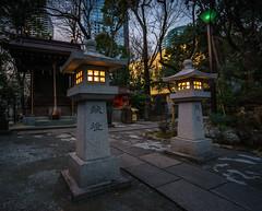 Shrine in the City (ErikFromCanada) Tags: trees sunset japan stone temple japanese lights tokyo evening shrine path sony kanji lanterns lantern shrubs softlight settingsun lateevening a7r
