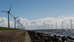 DSC_0603 (athdejong) Tags: windmill tulips noordoostpolder flevoland ijsselmeer tulpen windmolen enercon