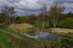 1241-16L (Lozarithm) Tags: landscape canals paths 1770 k50 newportcanal newportsalop smcpda1770mmf4alifsdm pentaxzoom