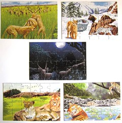 "Puzzle Book ""Big Cats"" (Leonisha) Tags: puzzle bigcats jigsawpuzzle grosskatzen"