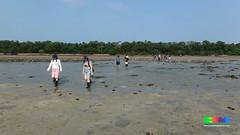 Public walk at Pulau Semakau (wildsingapore) Tags: people pulau guiding semakau