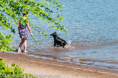 _DSC5226.jpg (orig_lowolf) Tags: people usa dog oregon nikon flickr lakeoswego georgerogerspark d300s chasingwater willimateriver