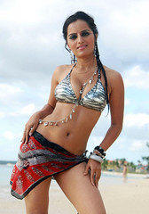 Bollywood Actress Meghna Patel Photos Set-3-HOT PHOTOS (28)