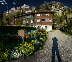 Longfellow (Elliott Bignell) Tags: flowers shadow man flower garden schweiz switzerland spring photographer suisse beds cottage ostschweiz blumen svizzera garten frhling frh bauernhaus walenstadt berschis
