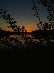 Sunset over the Water (emtay15) Tags: trees sunset sky orange plants sun nature water leaves silhouette night clouds river dark outside outdoors evening bush dusk horizon buds serene treeline