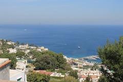 Capri (mathildepoupin) Tags: blue sky panorama mer port capri vacances holidays paradise italia ile cte bateaux bleu paysage vue italie ville panoramique isola rve