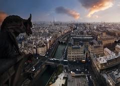 Postales desde Paris: Dreams of Elba (sgsierra) Tags: city paris france dream ciudad postal francia sueo notredam gargola
