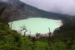 Kawah Putih crator or whitw crator #bandung #indonesia #ttot #travel ------------------------------------------- #bbctravel #lonelyplanet #tripadvisor #globetrotter #rgphoto #backpacking #traveler #instagood #traveling #instago #worldtravelbook #bestintra (christravelblog) Tags: travel me beautiful indonesia photography for do photos or feel free visit follow wanderlust more backpacking credit website them but contact lonelyplanet traveling bandung stories share whitw putih traveler crator globetrotter tripadvisor cooperate kawah ttot reisblogger travelgram bestintravel rgphoto instagood bbctravel instago travelingram igtravel igworldclub instapassport instatravel passionpassport travelstoke wwwchristravelblogcom worldtravelbook