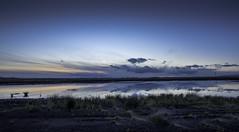 mosslands sunset (joe_bolton) Tags: sunset sky nature landscape nikon wideangle 20mm salford primelens mosslands landscapebeauty nikond750