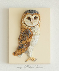 Barn Owl Sculpture Wall Hanging (Nature Visions) Tags: oneofakind ooak wallart polymerclay barnowl walldecor wallhanging wildlifeart polyclay supersculpey birdart