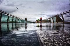 gloomy morning (teedee.) Tags: city morning bridge people bird bike photoshop cycling gloomy belfast