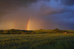 """ Yesterday evening, going home, show of the nature. All free !!! (pigianca) Tags: italy nature rain landscape rainbow thunderstorm siena leicac monteaperti"