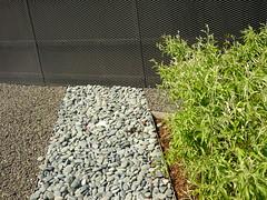 textures (Jrg Paul Kaspari) Tags: textures trier birne entree texturen textur altefrberei bobinet trierwest pyrussalicifolia weidenblttrige