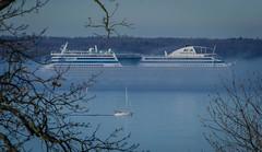 Cruise ship AIDAluna surrounded by fog (frankmh) Tags: sea water fog denmark ship sweden yacht outdoor cruiseship resund aidaluna
