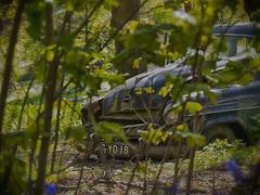 Opel Kapitn (martin_rees) Tags: abandoned car bluebells forest bush rust surrey nik guildford opel kapitan tonemapping stmarthashill hdrtoning hdrefex