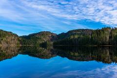Perfect Mirror (anbjornhansen) Tags: sky lake nature forest iso100 mirror sony 28mm wilderness f56 siljan 1320sec lardal α6000 hauksjø