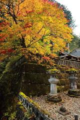 IMG_4796 (Nekogao) Tags: autumn fall japan october unesco  nikko  unescoworldheritage tochigi kanto        futarasanjinja tochigiprefecture nikkonationalpark  futarasanshrine