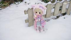 Kikipop in the snow (mamimirukia) Tags: snow cute doll sugar romantic frill azone kikipop