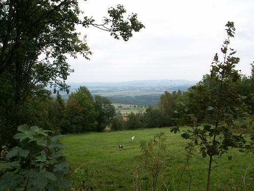 Łąki górnej części wsi Kopaniec