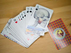 Skull - Muscle Playing Card - uniqe product from japan (LAZUR tomek pietek) Tags: playing classic students japan jack cards crazy war king play body muscle games queen medical poker card anatomy joker medicine multiplayer blackjack addition patience scramble casualty eights subtraction masseter badqueen goodking
