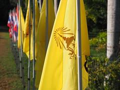 Thailand Wang Nam Khiao South-East Asia - Asien - (C) (hn.) Tags: copyright thailand asia asien heiconeumeyer seasia soasien southeastasia sdostasien flag fahne flagge copyrighted thaiflag yellowflag nationalflag nakhonratchasima nationalfahne wangnamkeaw wangnamkheow landesfahne wangnamkhiao wangnamkhieo gelbefahne nakhonratchasimaprovince chanwatnakhonratchasima nicslongstay wangnamkhiaodistrict
