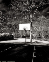 Where Are The People (mjardeen) Tags: trees texture uw grass basketball hoop court landscape ir washington sony 28mm adapter infrared wa converted f2 tacoma 21mm 282 wrightpark 720nm lifepixel landscapesshotinportraitformat tonalitypro