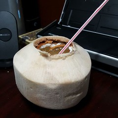 Mmmmm. Young Thai coconut. Opened with the coco jack.