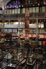 DSC_5588 (phil01535) Tags: oxford pittriversmuseum