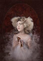 Danaus (Ilona Flores) Tags: life red portrait white crimson lady butterfly victorian butterflies peak baroque pure edith machaon ilonaflores