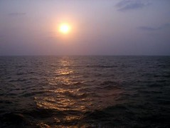 Kadalundi Azhimukham (Mob/WhatsApp:00919495509009) Tags: شمس بهار بحيرة غروب سفر ماء رحلة بحر طيور نهر الهند منتجع سياحة منتزه كيرلا محمية نزهة تمتع توابل كيرالا