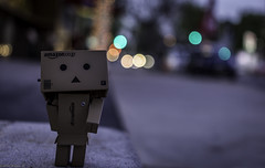 Little Danbo Big City (imkareneborter) Tags: bokeh danbo efs24mm