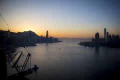 Hong Kong (Matt Kuchta) Tags: new sunset dog year chinese hong kong approved