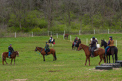 DSCF0320.jpg (Ed Traywick) Tags: horses horse leo robyn obstacles horseclinic