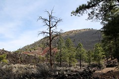 Sunset Crater Volcano National Monument-(Explored-Thank You!!) (outdoorpict) Tags: blue sky clouds volcano lava rocks crater twisted scrub pumice ponderosapines sunsetcraterwaputkimonument