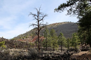 Sunset Crater Volcano National Monument-(Explored-Thank You!!)