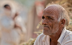 Pushkar-20151116-14.22.26 - 00069-Edit (Swaranjeet) Tags: november portrait people india indian ethnic pushkar rajasthan mela rajasthani 2015 camelfair animalfair