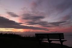 Lake Albert sunsets. Meningie #2 (robynbrody) Tags: sunset sky lake water clouds bench evening dusk seat albert australia southaustralia coorong