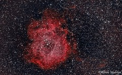 rosette nebula (monoceros) (Alfredo Madrigal) Tags: sky way stars deep via galicia nebula astrophotography cielo astrofotografa astrofotografia estrellas astronomy milky astronomia rosette nebulosa astronoma lactea roseta monoceros astrofoto astrometrydotnet:status=solved astrometrydotnet:id=nova1488778