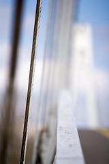 Suspended (Cortez_CRO) Tags: bridge detail suspension artistic osijek croatia most suspended hrvatska suspend